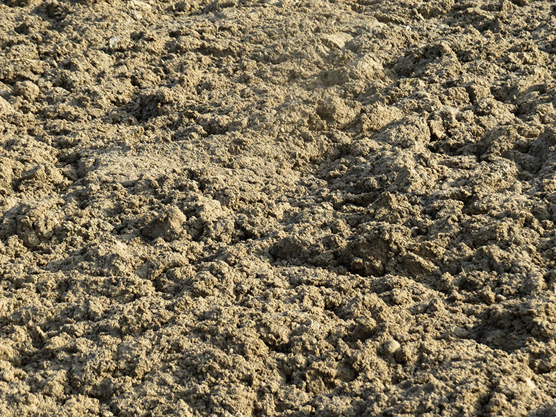 Aecon Case Treated mud