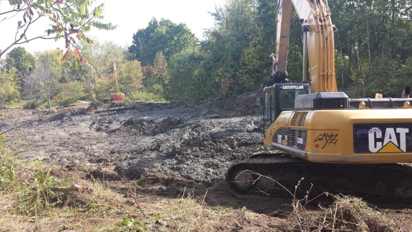 Solidification of Storm Water Pond Sediment