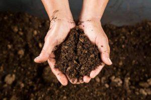 Soil Disposal North America